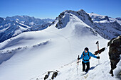 Female back-country skier ascending to Zwerchwand, Realspitze and Olperer in background, Zillertal, Zillertal Alps, Tyrol, Austria