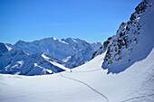 Back-country skier ascending to Realspitze, Hochfeiler and Hochferner in background, Zwerchwand, Zillertal, Zillertal Alps, Tyrol, Austria