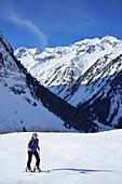 Female back-country skier ascending to Zillerkopf, Zillertal, Zillertal Alps, Tyrol, Austria