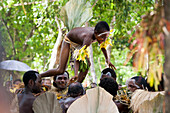 A boy is being lifted above adults during a traditional dance and cultural performance, Nendo island, Santa Cruz Islands, Solomon Islands, South Pacific