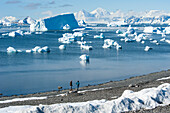 People walking along the rocky beach near Rothera Station with icebergs in the distance, Rothera Point, Adelaide Island, Antarctica