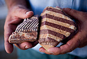 Two hands holding a Zebra Rock, rare stones only found at Lake Argyle, Lake Argyle, near Kununurra, Western Australia, Australia
