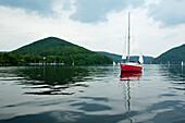 Sailing boat on Lake Edersee in Kellerwald-Edersee National Park, Rehbach, Lake Edersee, Hesse, Germany, Europe