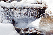 Branch with icicles in a small stream near Baerenmuehle watermill in Lengeltal valley in Kellerwald-Edersee National Park, Frankenau, Hesse, Germany, Europe