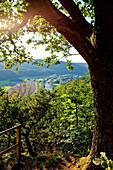 View from the Hagenstein viewpoint across the Eder valley towards Kirchlotheim in Kellerwald-Edersee National Park, Schmittlotheim, Hesse, Germany, Europe