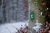 Sign of the Kellerwaldsteig walking trail on a tree in Kellerwald-Edersee National Park in Winter, Frankenau, Hesse, Germany, Europe