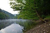 Mirrored view of Banfe Bucht at Lake Edersee at dawn with mist and forest in Kellerwald-Edersee National Park, Lake Edersee, Hesse, Germany, Europe
