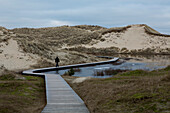Dune landscape with winding boardwalk with a single person walking over it on a cloudy winter day, Amrum island, Schleswig-Holstein, Germany, Europe