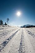 Cross country ski track, Styria, Austria