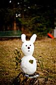 Snow rabbit in spring, Styria, Austria