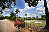 Exploring Cambodia among the vast countryside in rural villages along the river.