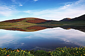 Photo taken at the Forche Canapine, Pantani in Umbria, spring upon us and the reflection ponds of the place make this lovely place.