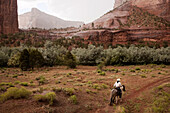 Navajo trail guide Nathan James, of Totsonii Ranch at Canyon de Chelly National Monument in eastern Arizona, leads a ride to the canyon floor. The park, still populated by Navajo farms and ranches, requires a Navajo guide for access to most of the canyon
