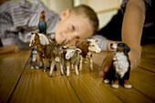 A young boy plays with farm toys at his home in the small Bavarian village of Lenggries.  The children are exposed to cattle and the barn every day as they help with small chores on the farm which has been in Jakob's family since 1773, at least 9 generati