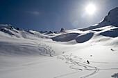 Man skis down hill in Alaska backcountry near Alaska Canada border on sunny blue sky day. Back lit,.
