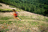 Lynn Schankliess and Nadia Costa trail running in the East Bay Hills above Berkeley and Oakland, California.