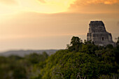 Sunset and Temple IV at the Mayan Ruins of Tikal. The temple towers 212 feet above the jungle floor, making it the tallest structure in North America before the construction of the skyscrapers in the late 1800's.  Guatemala, Central America.