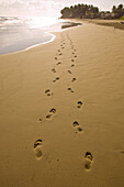 Dominican Republic - Two trails of footprints lead down the deserted beach near Cabarete.