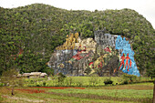 'The Mural de la Prehistoria Prehistoric Mural, in the Vinales Valley, in the Pinar del Rio Province of Cuba. Painted by artist Leovigildo Gonzalez Morillo, this massive mural lacks the style and weight of the works of his mentor, Diego Rivera. The Vinale