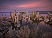 Tufa formations, towering remnants created by the upwelling of mineral deposits that formed underwater, make for an interesting and otherworldly scene at twilight along the shore of California's Mono Lake.