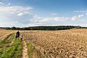 Mother and son hiking to viewpoint Schwarzer Berg, Schorfheide-Chorin Biosphere Reserve, Gerswalde, Uckermark, Brandenburg, Germany