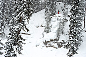 Skier in a blizzard looking for a way down, Gerlos, Zillertal, Austria