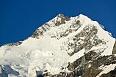 Piz Bernina with Biancograt, Bernina, Upper Engadin, Engadin, Grisons, Switzerland