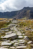 Hikers in the Ogwen Valley (Dyffryn Ogwen) with the Glyderau mountain range in front, Gwynedd, Snowdonia National Park, Wales, United Kingdom, Europe
