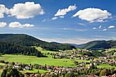 Baiersbronn, Black Forest, Baden Wurttemberg, Germany, Europe