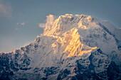 The evening sun on Annapurna South, 7219m, Annapurna Conservation Area, Nepal, Himalayas, Asia