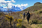 Hikers walking towards Condor Vista Point, with Lago Pehoe and the Torres del Paine in view, Torres del Paine National Park, Patagonia, Chile, South America