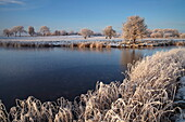 A beautiful hoar frost on a December afternoon at Bure Park in Great Yarmouth, Norfolk, England, United Kingdom, Europe