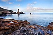 Rock and Spindle on the Fife Coast near St, Andrews, Fife, Scotland, United Kingdom, Europe