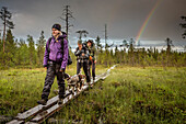 Three hikers on the Karhunkierros hiking trail, Oulanka National Park, Northern Ostrobothnia, Finland