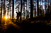 Hiker in midnight sun on the Karhunkierros hiking trail, Oulanka National Park, Northern Ostrobothnia, Finland