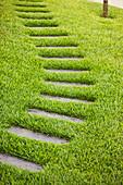 Footpath leading across lush green lawn