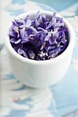 Violet flowers in cup