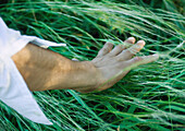 Man touching grass, cropped view of arm