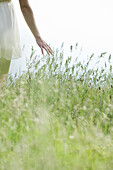 Young woman walking through tall grass, cropped