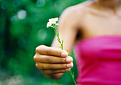 Woman holding out flower, partial view
