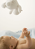 Baby lying on back, looking up at toy