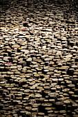 Abundance of wooden logs