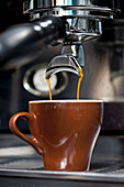 A double shot of espresso being poured from an espresso maker