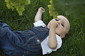 Baby lying on grass looking up at grapes