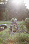 Mature man working in vegetable garden