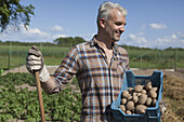 Smiling mature man carrying crate of harvested potatoes at vegetable garden