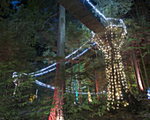 View of illuminated Capilano Suspension Bridge Park, Vancouver, British Columbia, Canada