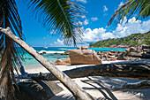 Sandstrand mit Palme, Seekajaktour mit Katamaran als Basislager auf den Seychellen, Indischer Ozean