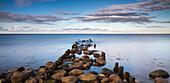 Coastal landscape at Buelk, Kiel fjord, Baltic sea, Strande, Kiel, Schleswig-Holstein, Germany