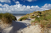 Dunes and the North Sea, Amrum, Schleswig Holstein, Germany